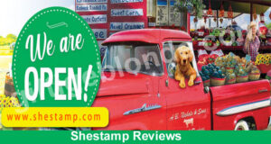 Shestamp Reviews (April) Is This Website Legit Or Not